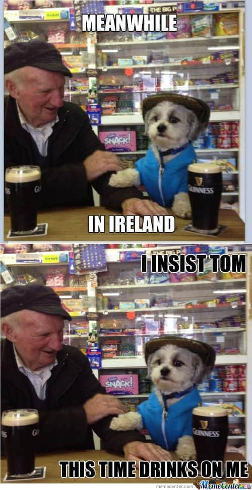 I Insist Tom Irish Memes