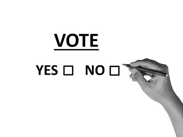 yes vote Ireland on the 8th amendment irish vote