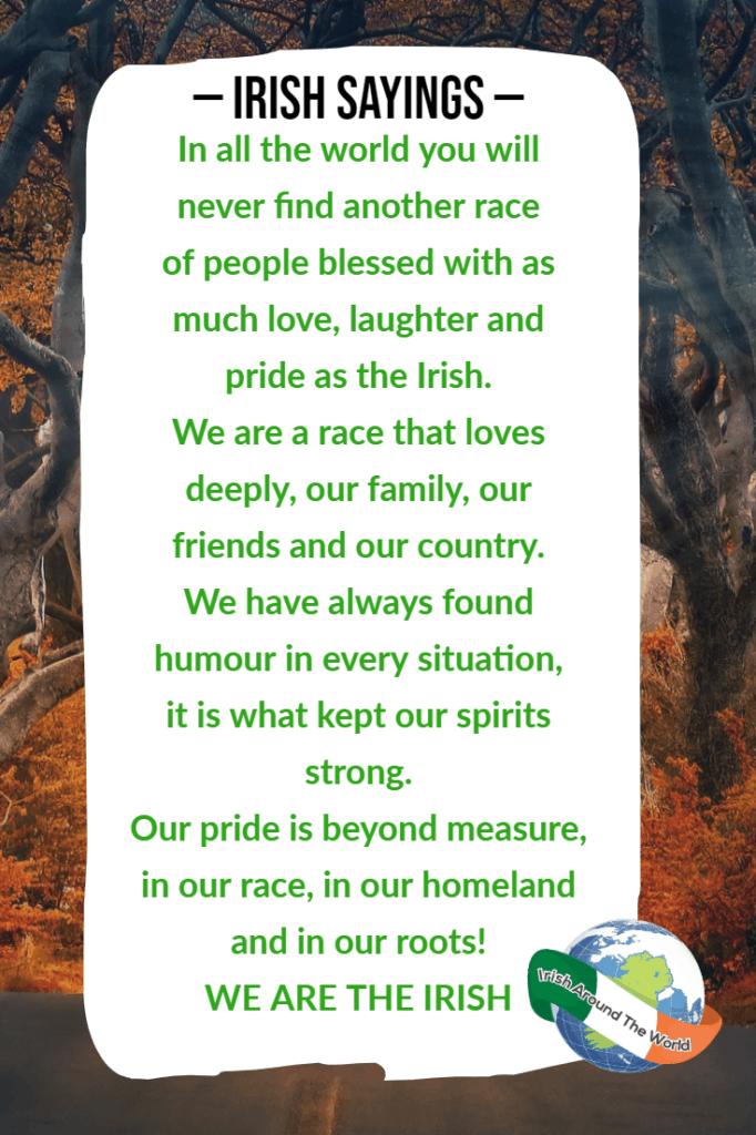 Irish sayings - We Are The Irish