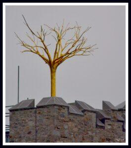 Golden tree on top of Belvelly