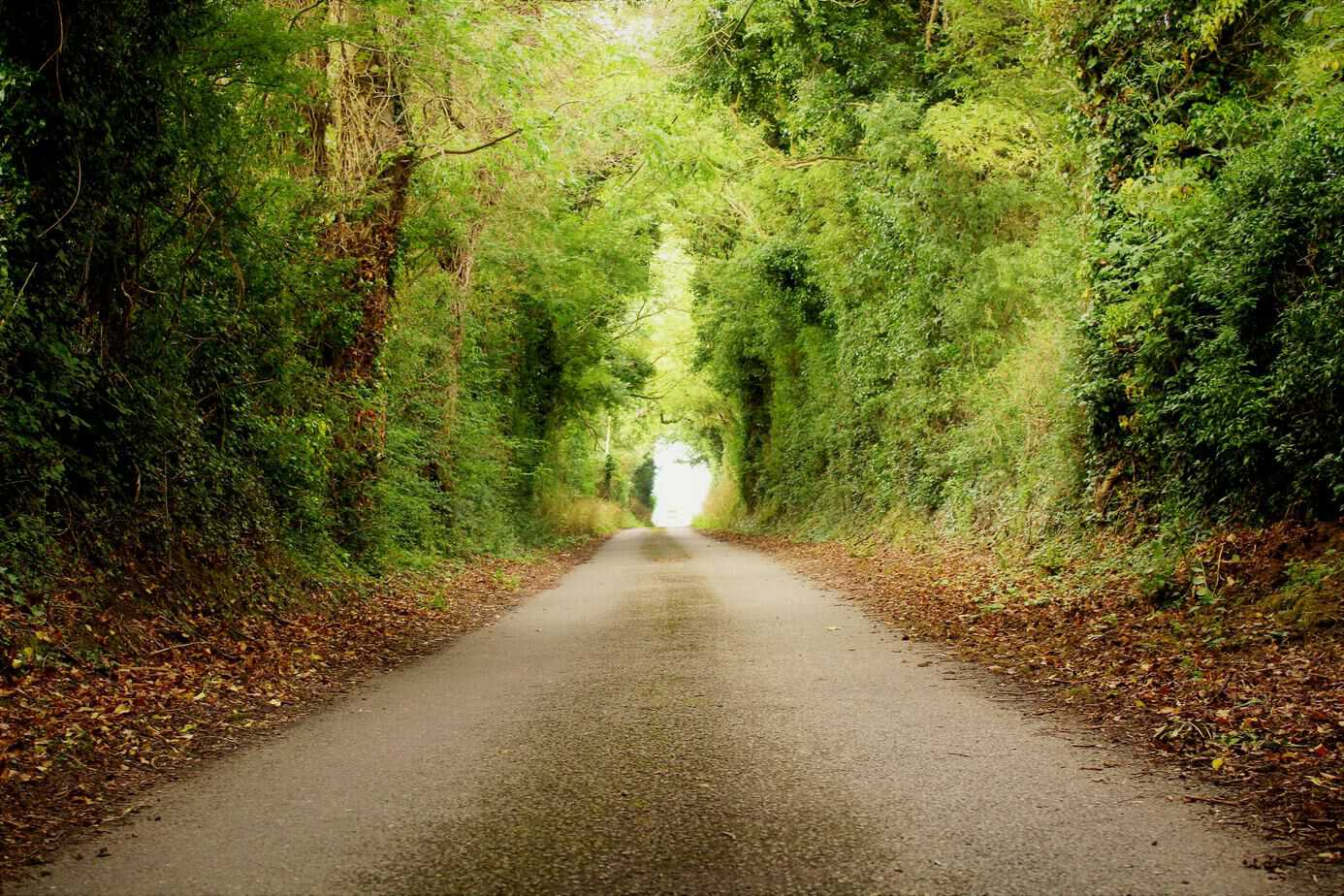 The Gordon Bennett Route, Co Carlow, Co Kildare and Co Laois