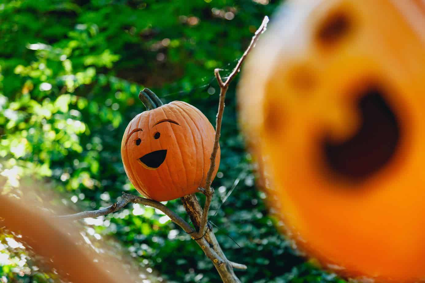 A picture of a funny looking Jack o lantern for halloween
