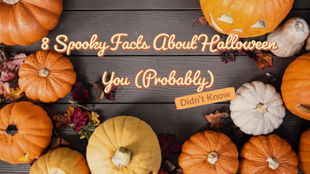 Halloween facts you might not know