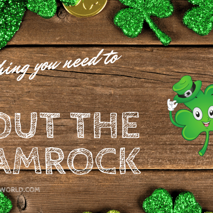 Everything You Didn't Know About The Shamrock And It's Irish History
