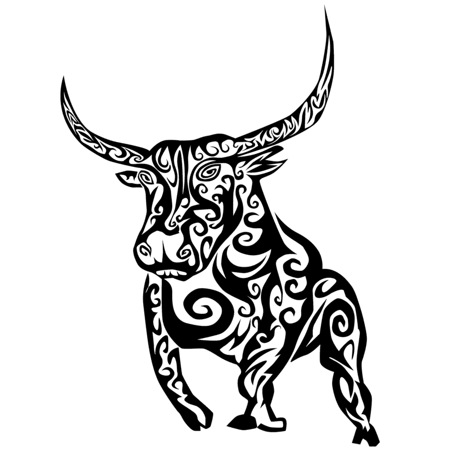 The Celtic bull tattoo