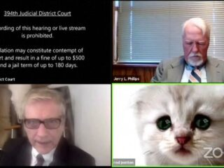 cat lawyer filter