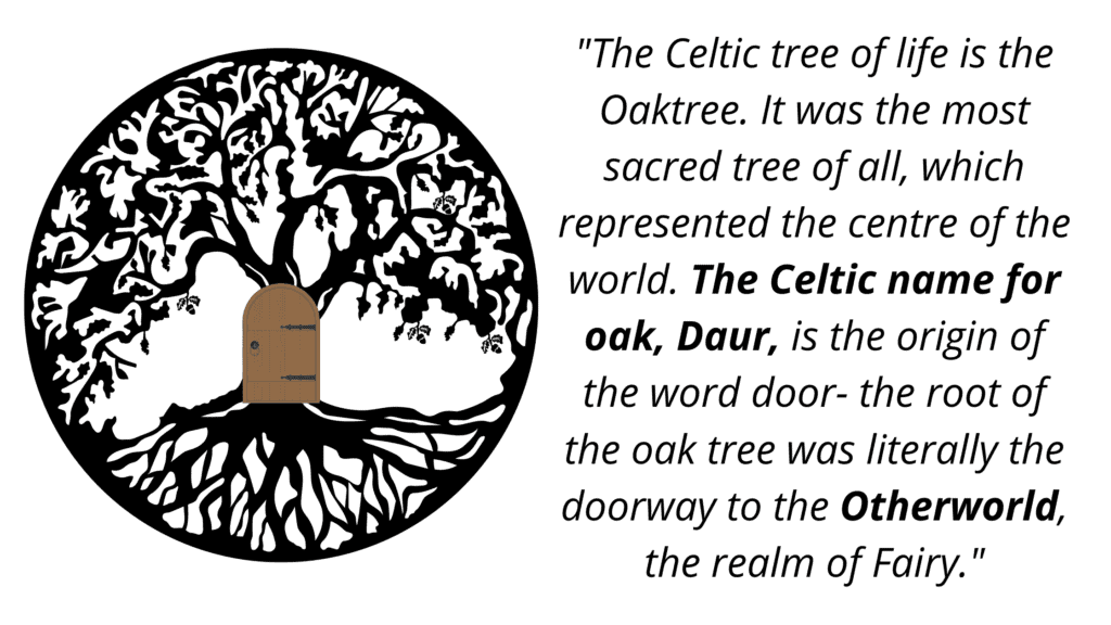 The Celtic tree of life is the Oaktree. It was the most sacred tree of all, which represented the centre of the world. The Celtic name for oak, Daur, is the origin of the word door- the root of the oak tree was literally the doorway to the Otherworld, the realm of Fairy.